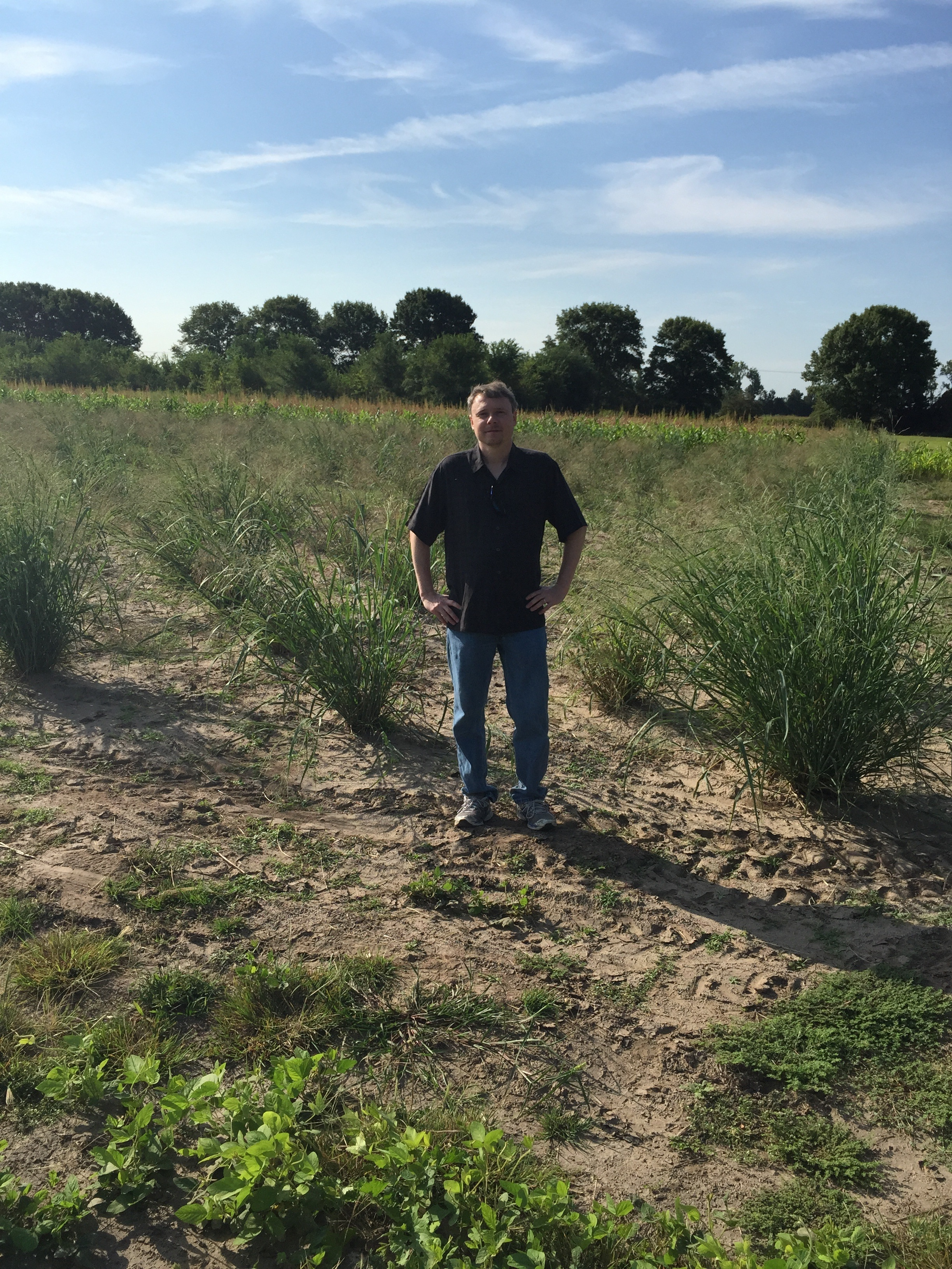 Jeremy in switchgrass