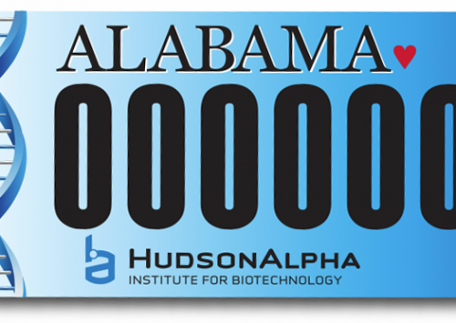 Order a custom HudsonAlpha license plate